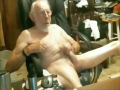 Game cock 02